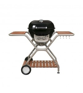ASCONA 570 G outdoorchef